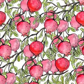 Pomegranate branches watercolor