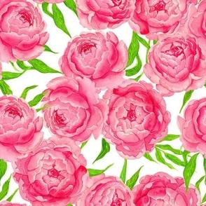Pink peonies watercolor, saturated colorway