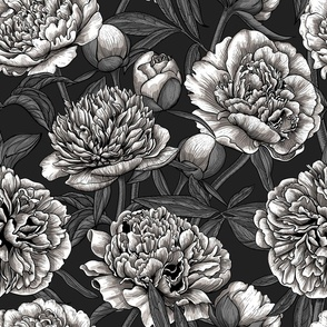 White peony garden in shades of gray and black