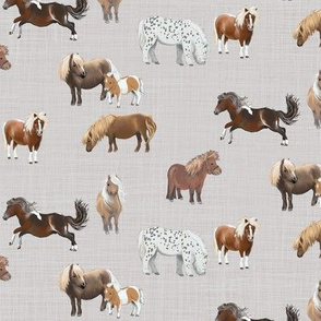 pony up: pasture in silver