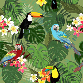 Tropical forest and birds pattern