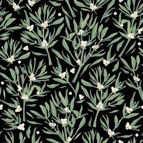 Mistletoes on Black Background / Small