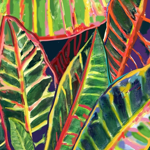 Flamboyant Croton Leaves3-with red