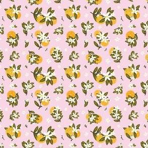 Pickleballs and Orange Blossoms (light pink) Mini