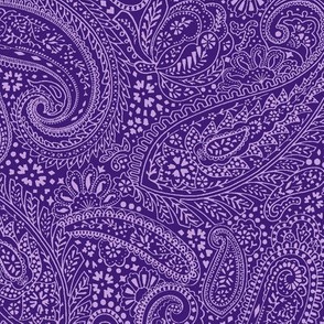 small Paisley Positivity purple 2