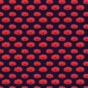 Red Poppy Flower Dark