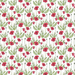 Poppy Flowers Pattern White