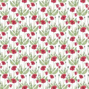 Poppy Flowers Pattern White