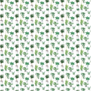 Leaves Plants Pattern On White