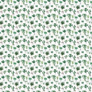 PlantsPatternPreviewWhite