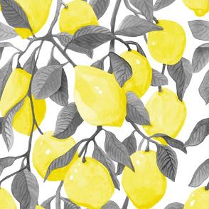Watercolour Lemon Tree // Botanical Print // Spring Summer // Fruit