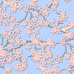 cherry_blossom_special