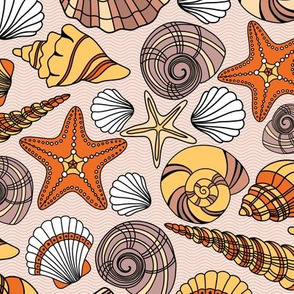 Summer Seashells