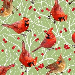 Snowy Cardinal Love | Small | Celery Green 3