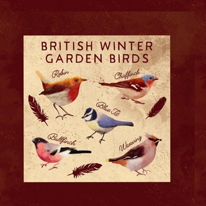 British winter birds