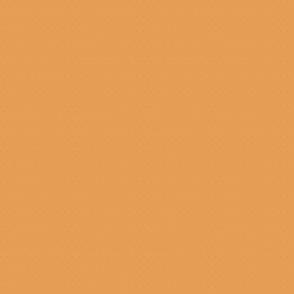 Tangerine Orange to match Diamond Patterns i Pastels