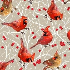 Snowy Cardinal Love |Sm| Warm Stone