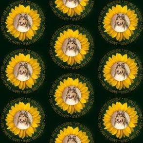 Sunshine Collie