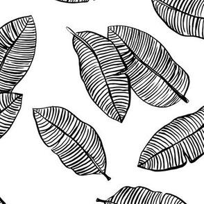 Jumbo banana leaves tropical botanical jungle garden boho nursery neutral monochrome black and white