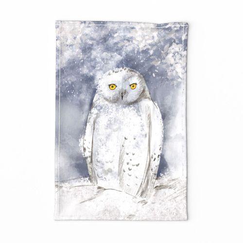 snowy owl sp