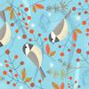 Wintertime_birds