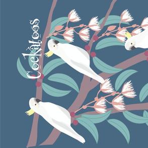 Cockatoos in the Garden