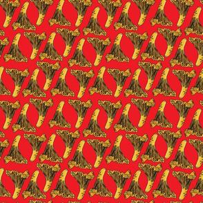 finferli red
