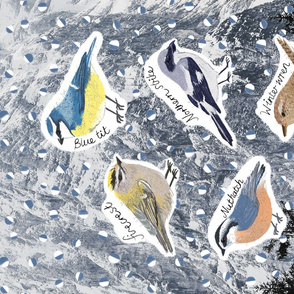 Winter Birds in Carinthia