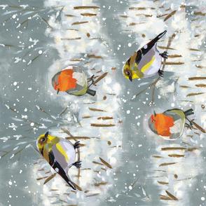 Snowy Winter Birds