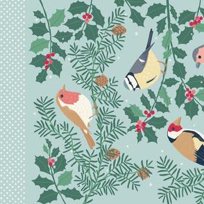Robin and Friends: Winter Garden Birds