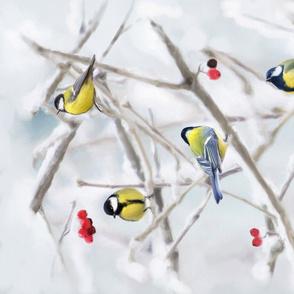 Tintti_ Backyard Winter Birds