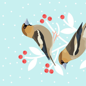 Resting Hawfinches