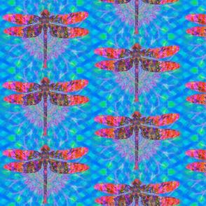 Dragonfly Light Weaver