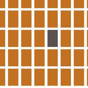 Orange and Brown Lites