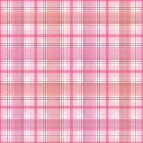 Pink and red plaids-nanditasingh