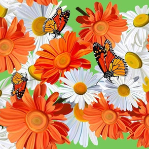 Monarch Butterfly and Daisies-Lt. Green
