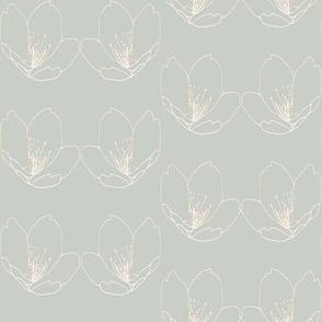Lotus-olive