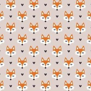 Autumn fox. Micro scale