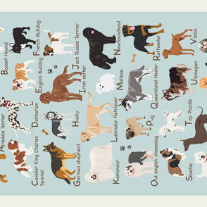 ABCs of Dogs