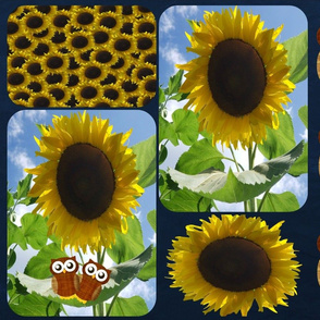 owls and Sunflower 1