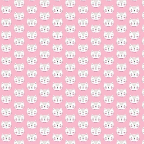 Sweet kitty pink