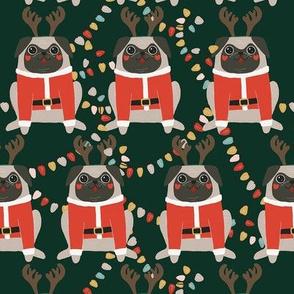 Cute pug with reindeer horns. Christmas pugs
