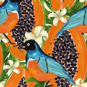 Papaya garden and blue birds. Vibrant orange