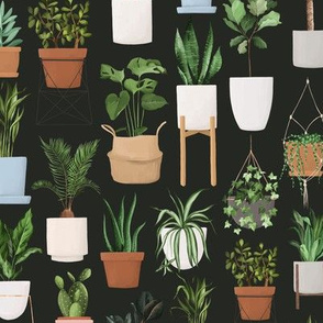 House Plants Dark / Plant Lovers