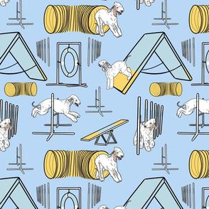 Simple Bedlington Terrier agility dogs - blue