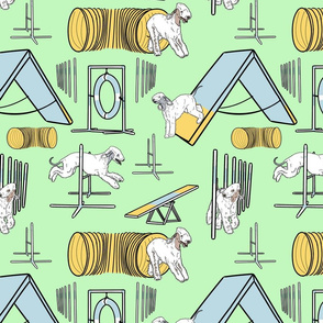 Simple Bedlington Terrier agility dogs - green