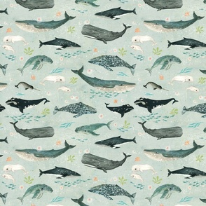 Whale whispers {super small}