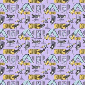 Small Simple bi merle tricolor Shetland Sheepdog agility dogs - purple
