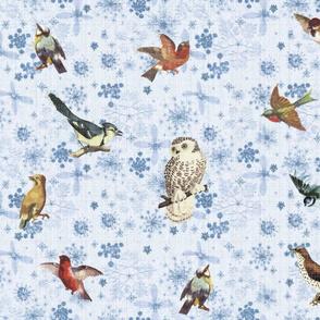 Snowflakes and Backyard Winter Birds