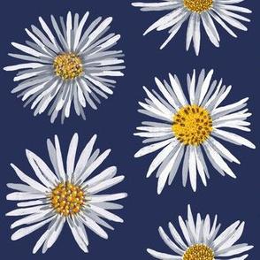 white asters on dark blue dense